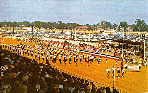 WeBo_Band_1974