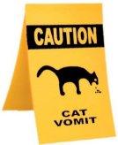 Cat_vomit