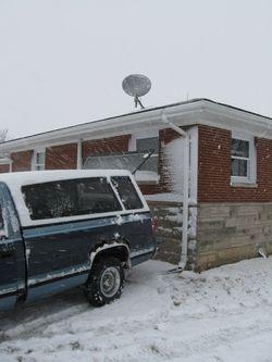 Snow_2010_Feb 003